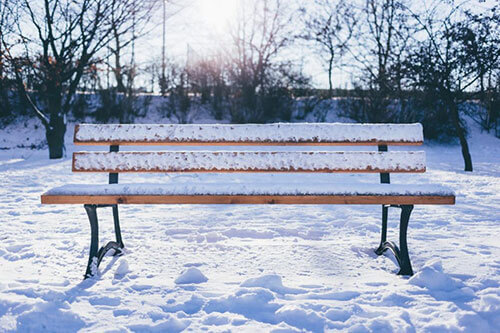 bench with snow on it