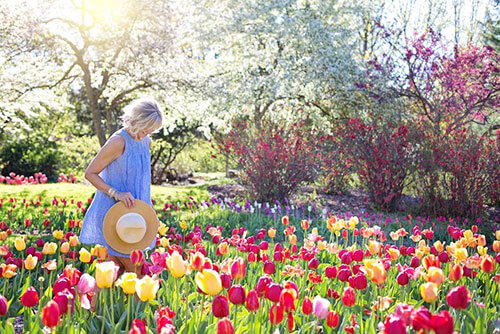 woman stood among pink and yellow flowers on a sunny day