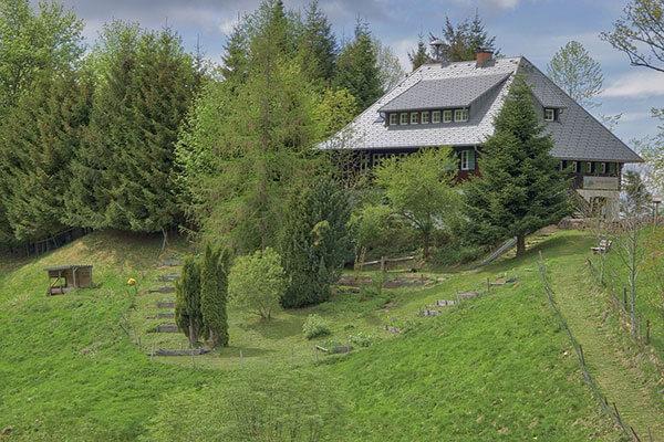 slope style garden