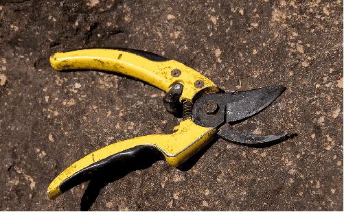 Pruning scissors