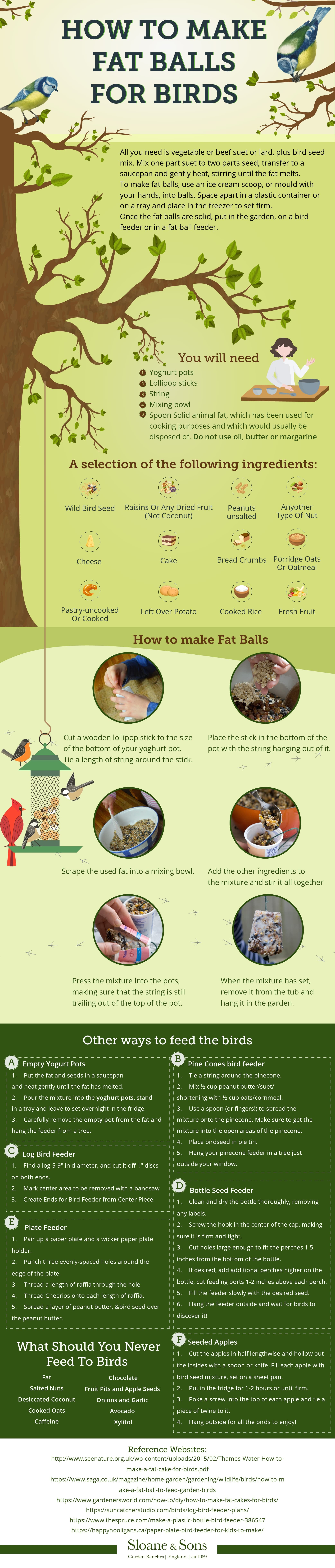 How To Make Fat Balls For Birds