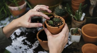 small pots
